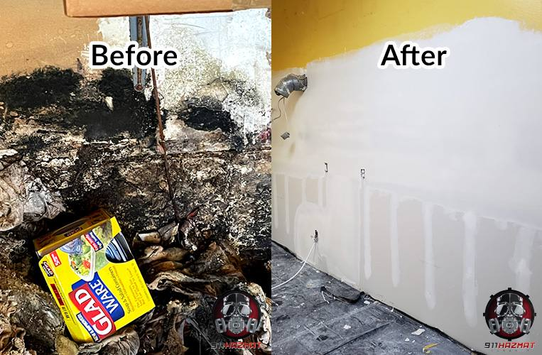 Before and after mold remediation